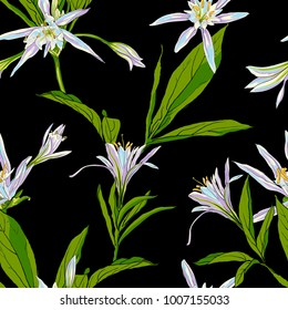 Hand Drawn Flowers Lilies on a white background Seamless