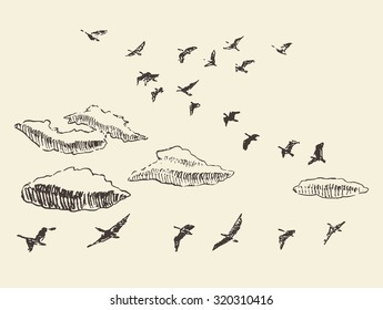Hand drawn flying birds in the sky with clouds, vintage vector illustration