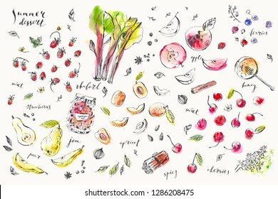 Hand drawn food and drink illustration. Ink and watercolor sketch of garden berries and fruits, spices, herbs for cooking and tea. Strawberry, cherry, apple, pear, rhubarb, apricot, cinnamon, thyme.