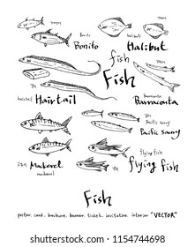 Hand drawn food ingredients - sea food menu illustrations - vector