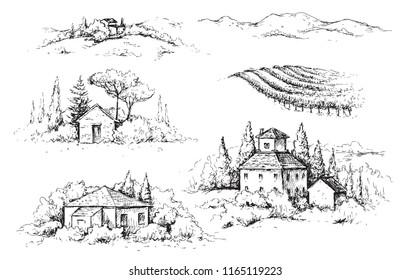 Hand drawn fragments of rural scene with houses, vineyards and trees. Monochrome rustic landscape illustration. Vector sketch.