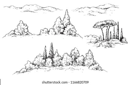 Hand drawn fragments of rural scene with hills, bushes and trees. Monochrome rustic landscape illustration. Vector sketch.