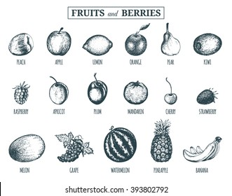 Hand drawn Fruits and berries sketches collection. Hand drawn greengrocery set for organic drink cards, farm eco products tags: Plum, Lemon, Orange, Apple,  Watermelon, Peach, Strawberry, Banana etc.
