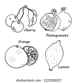 Hand drawn fruits icons set vector illustration for your design. Isolated on white background.