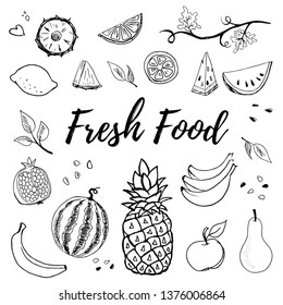 Hand drawn fruits set vector illustration isolated on white background. Pineapple, apple, pear, lemon, banana, watermelon, pomegranate. Whole, parts, leaves and brunches sketch style collection.