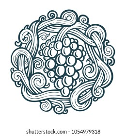 Hand drawn grape vine illustration.  Bunch of grapes vector design element. Grape and vine logo and background.