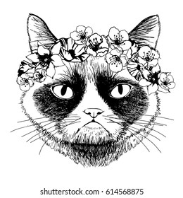 Hand drawn grumpy siamese cat  with circlet of flowers. Vector isolated illustration