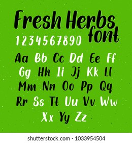 Hand drawn grunge brush script. Vector alphabet with letters and numbers. Trendy handwritten font named Fresh Herbs on green color background with splatter