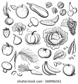 Dessin Salade Images Stock Photos Vectors Shutterstock