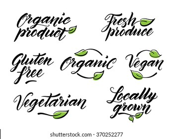 Hand drawn healthy food brush lettering. Organic, organic product, gluten free, vegan, locally grown, vegetarian, fresh produce. Label, logo template isolated on white background.