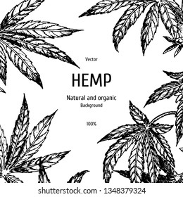 Hand drawn hemp background. Cannabis leaf. Sketch of marijuana. Black and white graphic layout design for packaging. Vector illustration.