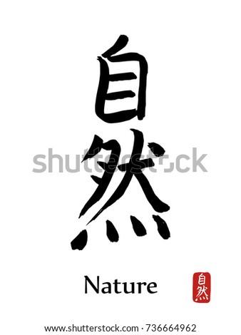 Hand Drawn Hieroglyph Translates Nature Vector Stock Vector Royalty