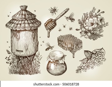 Hand drawn honey, beekeeping, bees. Collection vintage sketch vector illustration