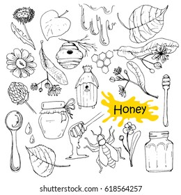 Hand drawn honey set with jars, hives, flowers and bee.
