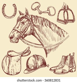 Hand drawn horse with bridle and horseback riding tack isolated - Vintage style riding equipment