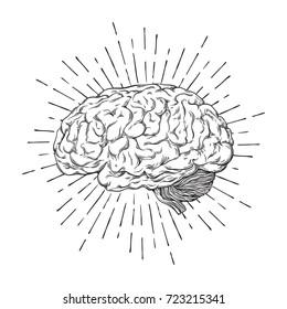 Hand drawn human brain with sunburst anatomically correct art. Flash tattoo or print design vector illustration.
