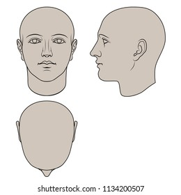 Hand drawn human head in face, profile and top views. Flat vector isolated on white background. The drawings can be used independently of each other.