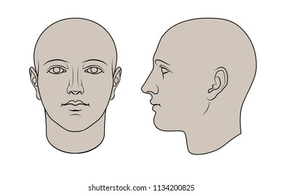Hand drawn human head in face and profile. Flat vector isolated on white background. The drawings can be used independently of each other.