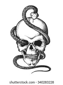 Hand drawn human skull entwined by snake. Vector illustration