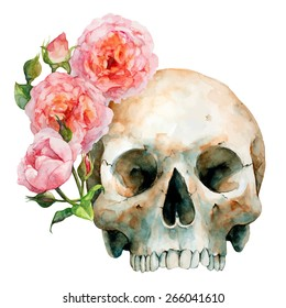 Hand Drawn Human Skull With Pink Roses, Watercolor Sketch, Vector Illustration -  Halloween, Day Of The Dead.