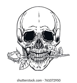 f8b8ccebe4159 hand drawn illustration of anatomy human skull with a rose in his mouth