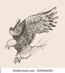 Hand drawn illustration of eagle catching