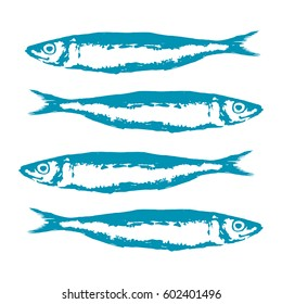 Hand Drawn Illustration a Group of sardines, Sardina pilchardus, Blue on white
