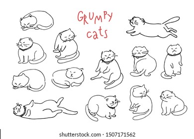 Hand drawn illustration of grumpy cats with collar and bell, sitting like human, running, jumping, sleeping and licking their back