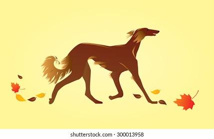 Hand drawn illustration of hound