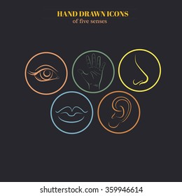Hand drawn illustration of human senses made in line vector style. Template for business card and banner