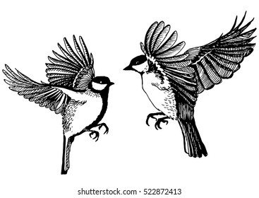 Hand drawn illustration of ink birds