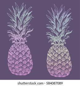 Hand Drawn Illustration Of Isolated Pineapple Fruit Silhouette This Can Be Used For Coloring