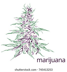 Hand drawn Illustration of marijuana