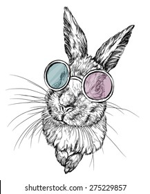 Hand drawn illustration of a rabbit in glasses. isolated on white