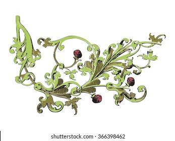 Hand drawn illustration of strawberry bushes vector. Branch with buds and berries. Vegetal ornament colorful on white background