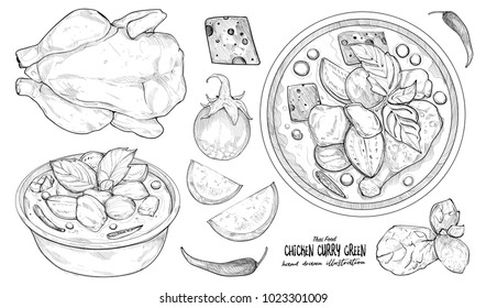 hand drawn illustration of thai food. Green Chicken Curry.