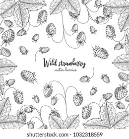 Hand drawn illustration of wild strawberry isolated on white background. Berries engraved style illustration. Detailed frame with berries. Applicable for menu, flyer, label, poster, print, packaging