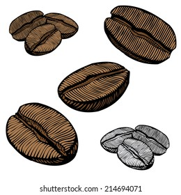 Hand Drawn Illustrations of Coffee Beans
