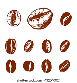 hand drawn ink coffee beans, sketch of coffee beans. vector eps 8