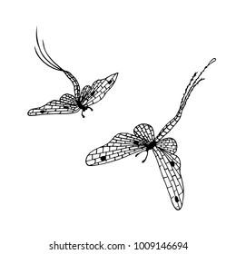 Hand drawn ink monochrome mayflies sketch stock vector illustration for design element