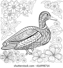 Duck Coloring Pages High Res Stock Images Shutterstock