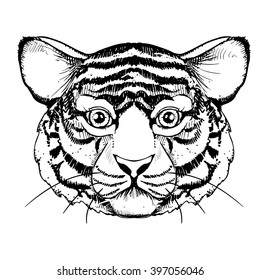hand drawn ink realistic tiger on white background. design for  poster, print, t-shirt, invitation, banners, flyers.