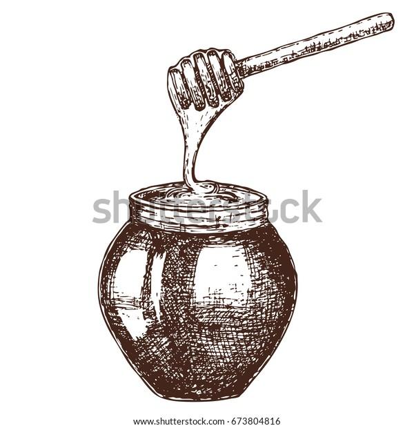 Hand Drawn Ink Sketch Illustration Honey Stock Vector