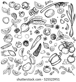 Hand drawn ink sketch. Set of various vegetables. Sketches of different food. Isolated on white