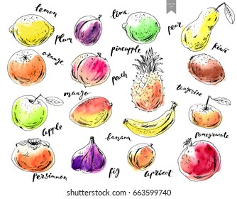 Hand drawn ink sketch and watercolor stain fruits with lettering. Apple, orange, fig, pineapple, pear, mango, lime, plum, apricot, peach, kiwi, banana, pomegranate, persimmon.