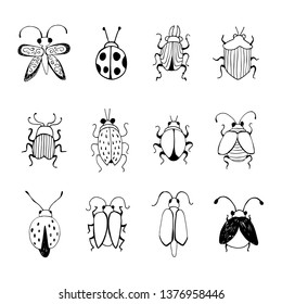Hand drawn Insect Sketch. Design for handmade decorative brooch.