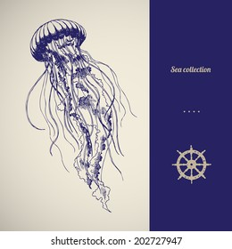 Hand drawn jellyfish. Vector illustration. Sea collection.