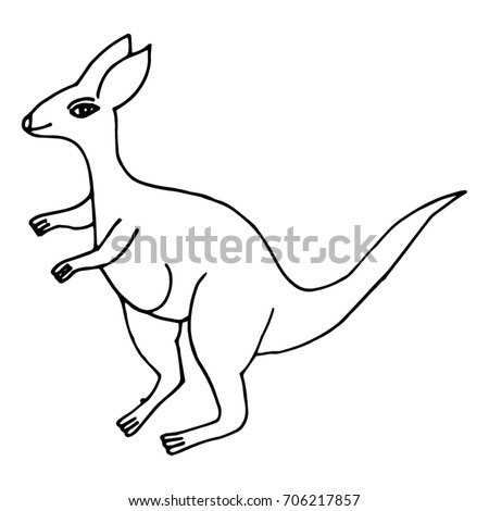 hand drawn kangaroo outline on white stock vector royalty free