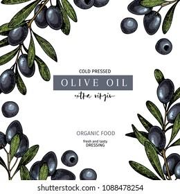 Hand drawn label of extra virgin black olive oil. Vector colored vintage art. Set of farm vegetables. Organic sketched vegetarian objects. Use for restaurant, menu, package, market, flyer, template.