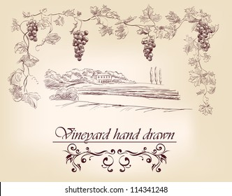 hand drawn label vineyards vector illustration  isolated